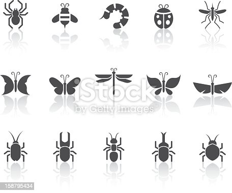Insect related vector icons for your design and application.