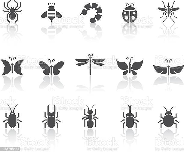 Insect icons simple black series vector id158795434?b=1&k=6&m=158795434&s=612x612&h=gkc7t0wvwfvhkpurm3t7  ke6ltmkytgjsngev3jrgm=
