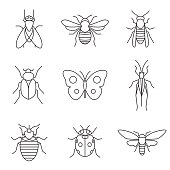 insect icons. Eps10 vector illustration with layers (removeable). Png, Pdf and high resolution jpeg file included (300dpi).