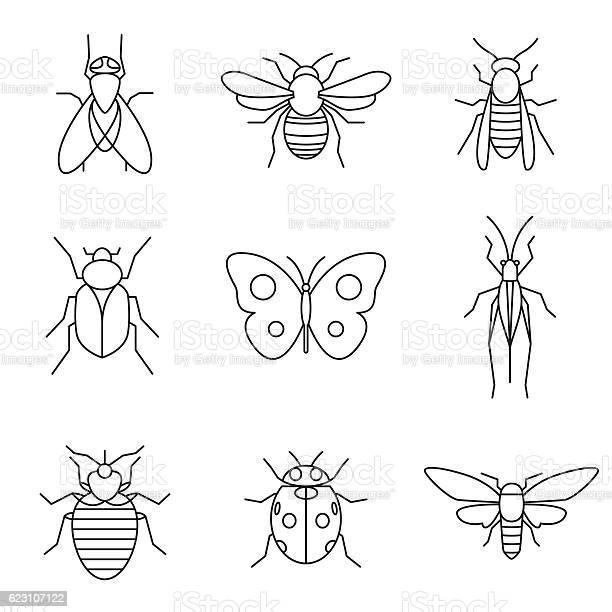 Insect icons vector id623107122?b=1&k=6&m=623107122&s=612x612&h=un9gk yza8pzao70rspkqco5l5m  u95ci 7k scm c=