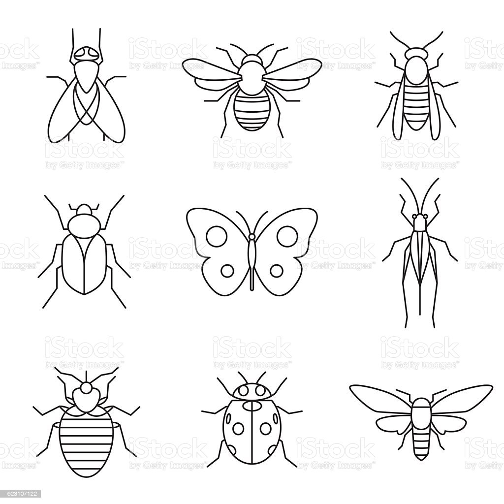insect icons vector art illustration