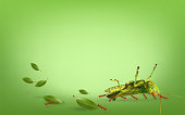Insect life concept, The ants are moving grasshoppers on green background, vector illustration.