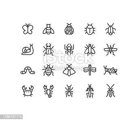 Set of insect line vector icons. Editable stroke.