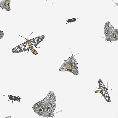 Insect Repeat Pattern