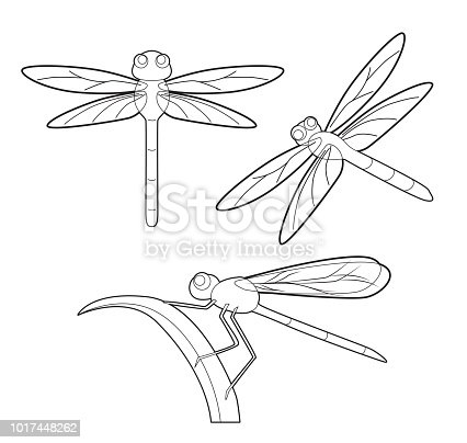 11 Best dragonfly clipart images | Dragonfly clipart ...