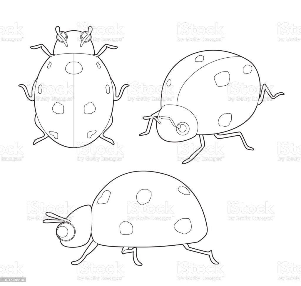 Ilustración De Vector De Dibujos Animados Insecto Mariquita Linda