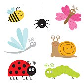 Insect set. Ladybug, dragonfly, butterfly, caterpillar, spider, snail. Isolated.