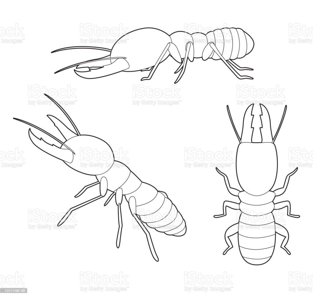 Ilustración de Vector De Dibujos Animados De Insectos Termitas Set ...