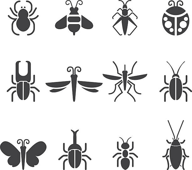 insect silhouette icons| eps10 - bugs stock illustrations, clip art, cartoons, & icons