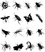 hand drawn of vector black insect silhouette set.