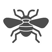 Insect solid icon, Insects concept, bee sign on white background, flying insect icon in glyph style for mobile concept and web design. Vector graphics