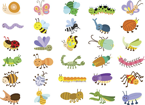 insect - bugs stock illustrations, clip art, cartoons, & icons