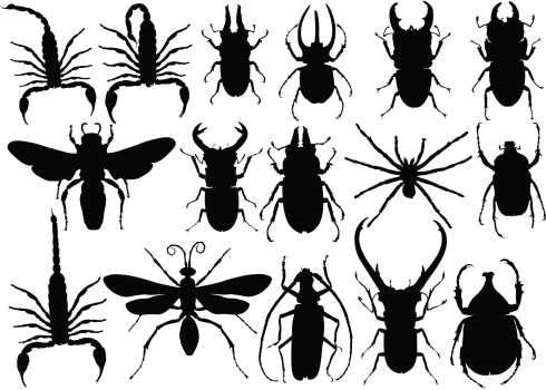 Insects silhouette stock illustrations
