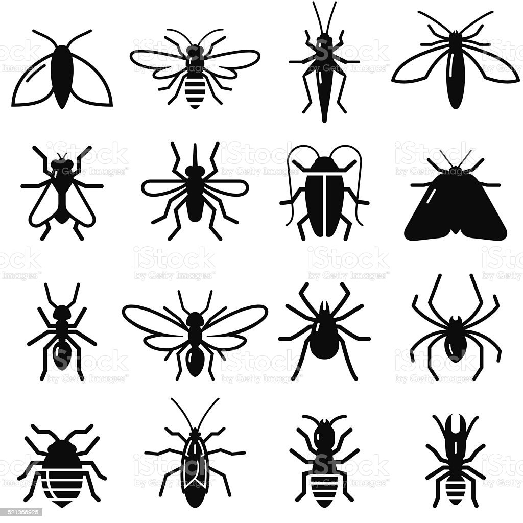 Black And White Clip Art Of Insects - Clipart Vector Design •