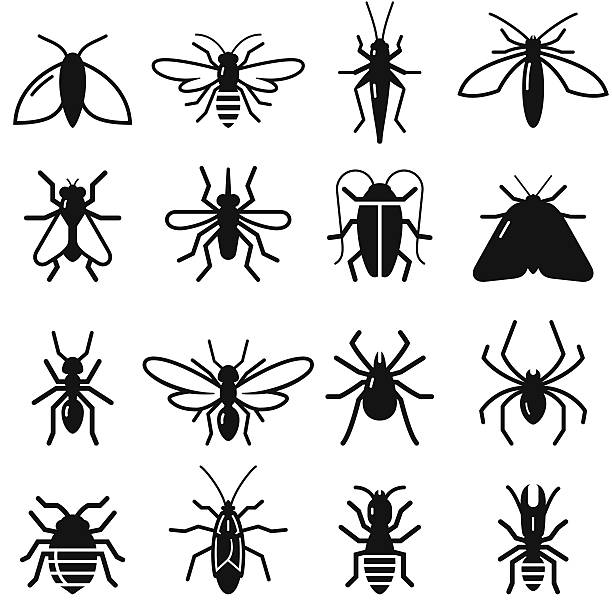 Insects And Bugs - Black Series Insects and bugs symbols. Vector icons for video, mobile apps, Web sites and print projects.  fly insect stock illustrations