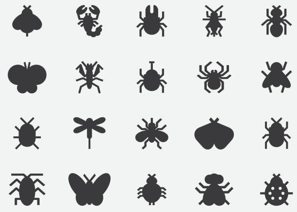 insects and bugs black silhouette icons - bugs stock illustrations, clip art, cartoons, & icons