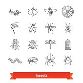 Insects and pest extermination thin line icons set