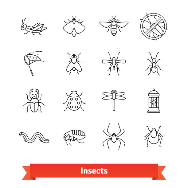 insects and pest extermination thin line icons set - bugs stock illustrations, clip art, cartoons, & icons