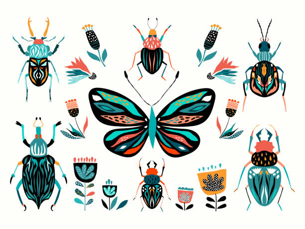 Insects collection vector design Insects collection with different abstract elements isolated on white background beetle stock illustrations