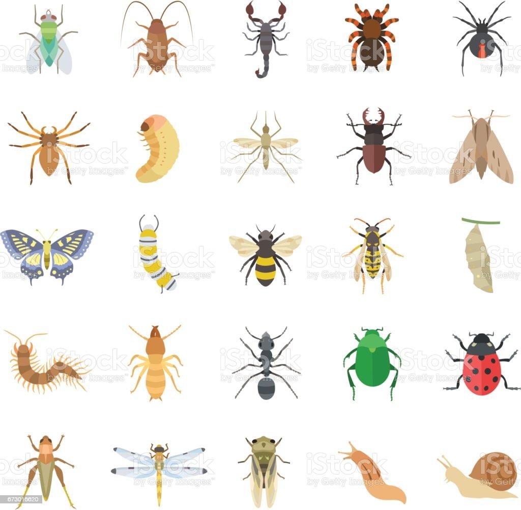 昆虫カラー ベクトル アイコン ベクターアートイラスト