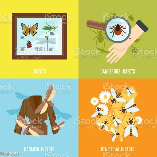 Insects flat vector id1201090875?b=1&k=6&m=1201090875&s=612x612&h=h7cg94pnrv0w1vb1z4tibag2ov rvdl4opqt8tyh4ao=