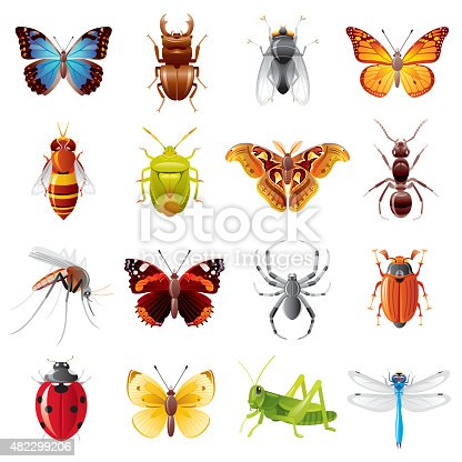 Fine colorful icon set with 16 insects, which you can meet in different places of our planet.