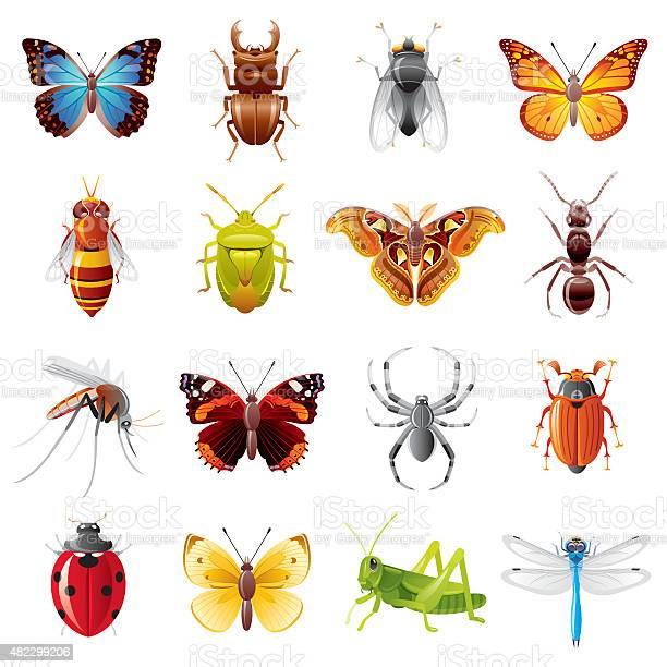 Insects icon set vector id482299206?b=1&k=6&m=482299206&s=612x612&h=ubgebkkp ae  idojh1ok fhoee75tnjlz86z5e3ero=