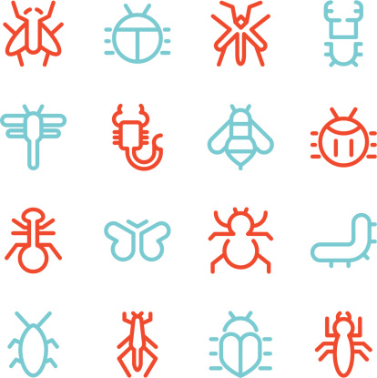 Insects Icons - Line Color Series