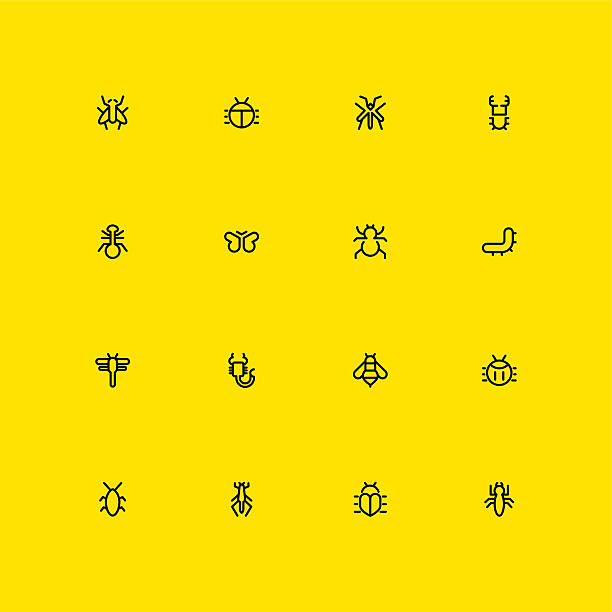 Insects Icons - Line vector art illustration