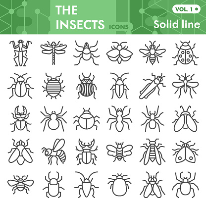 Insects line icon set, bugs, beetles, termites symbols collection or sketches. Insects silhouettes linear style signs for web and app. Vector graphics isolated on white background.