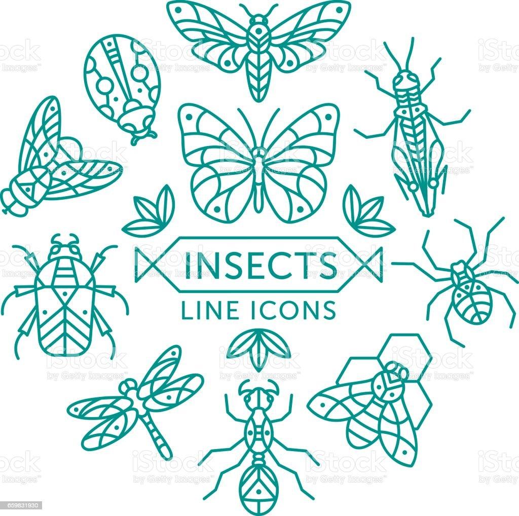 Icônes de ligne insectes - Illustration vectorielle