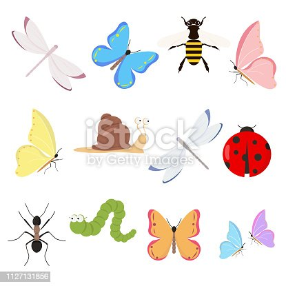 Insects set on white background for graphic and web design, Modern simple vector sign. Internet concept. Trendy symbol for website design web button or mobile app