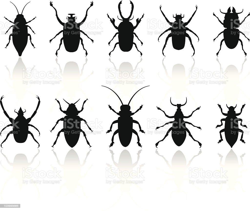 Insekten Silhouetten set - Lizenzfrei Aggression Vektorgrafik