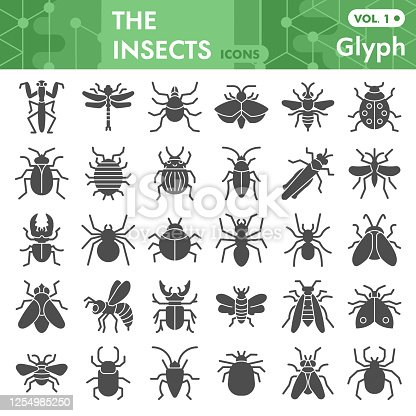 Insects solid icon set, bugs, beetles, termites symbols collection or sketches. Insects silhouettes glyph style signs for web and app. Vector graphics isolated on white background