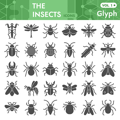 Insects solid icon set, bugs, beetles, termites symbols collection or sketches. Insects silhouettes glyph style signs for web and app. Vector graphics isolated on white background.