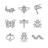 Insects thin line art icons set