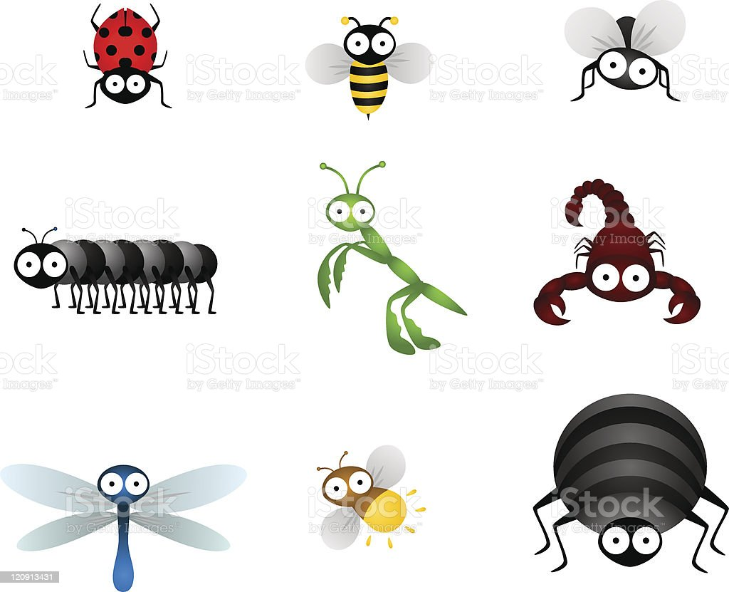insects vector art illustration
