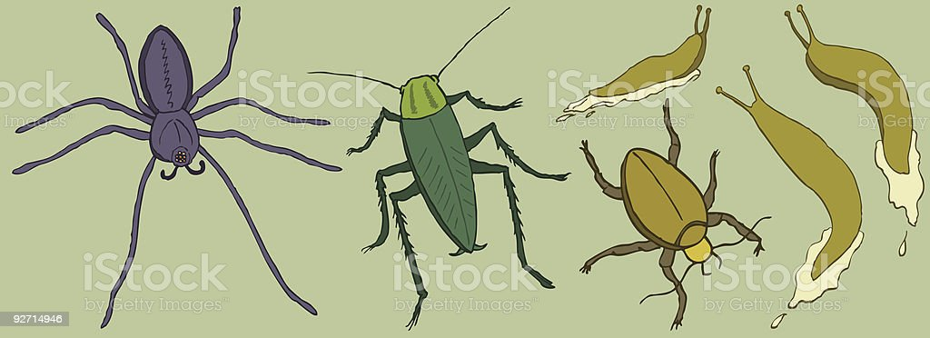Insects royalty-free insects stock vector art & more images of animal