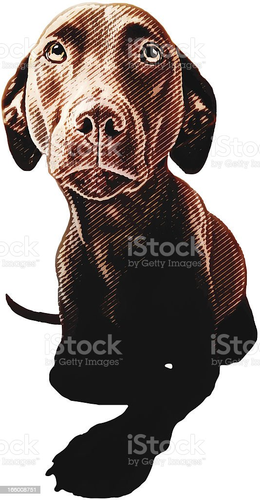 Insecure Puppy royalty-free stock vector art