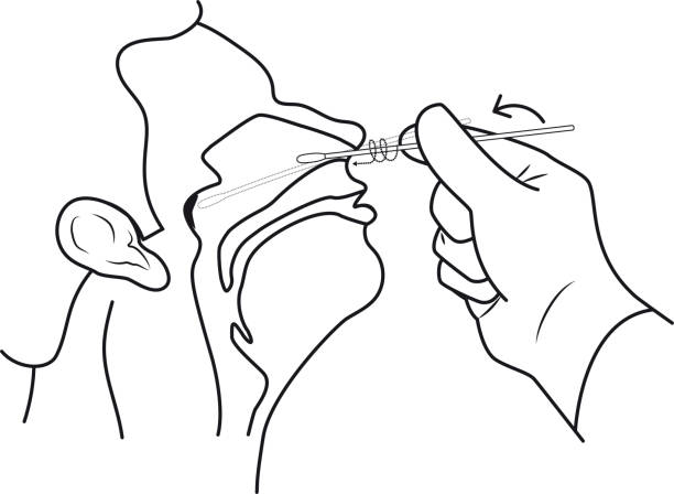 insert the swab into the nostril lines vector art illustration