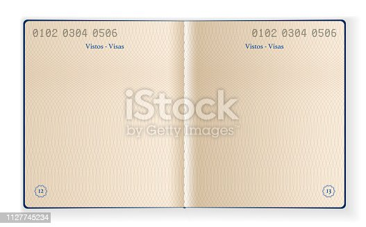 Vector Illustration of two interior pages of a blank passport