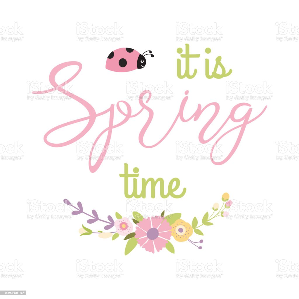Inspiration spring quote It is Spring time into gentle floral wreath decorative flowers bouquet ladybug