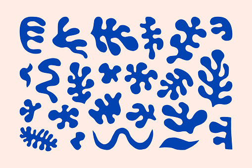 Inspired Matisse Geometric and Organic Shapes in a trendy minimal style. Vector Abstract Contemporary Floral Elements