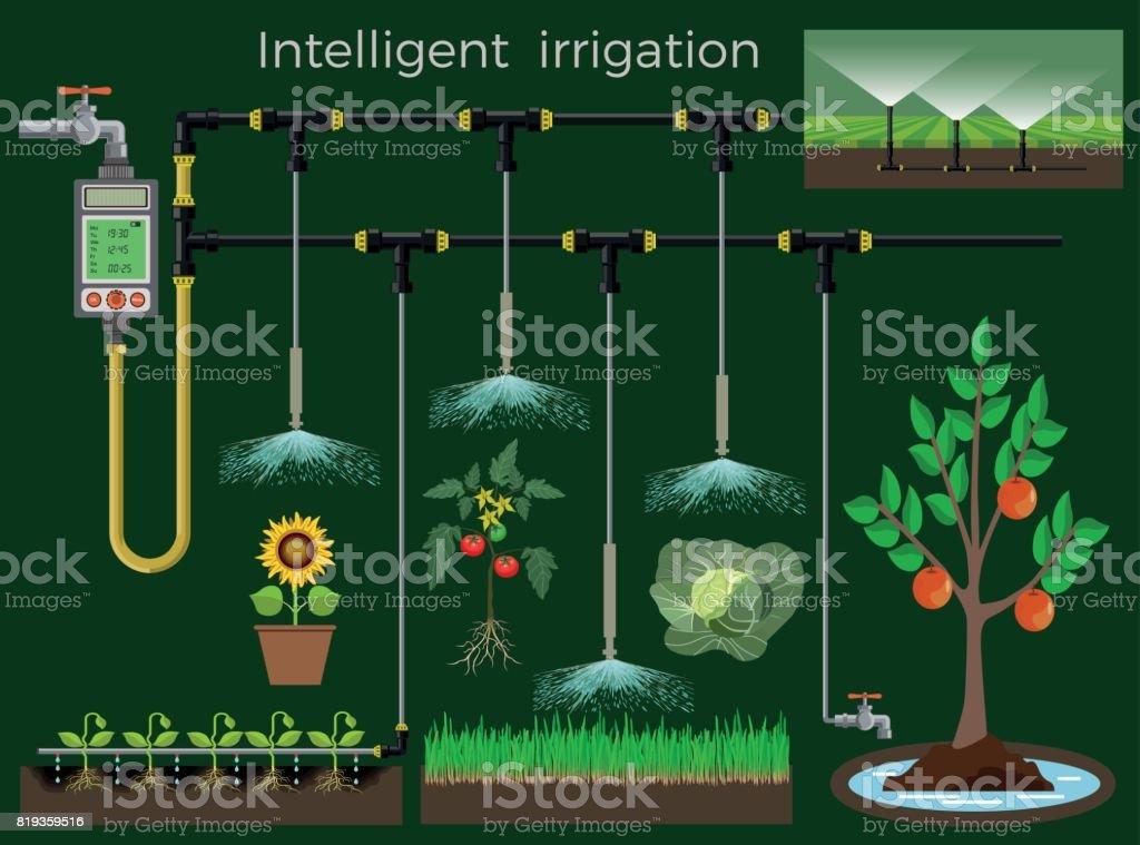 Intelligent irrigation system vector art illustration