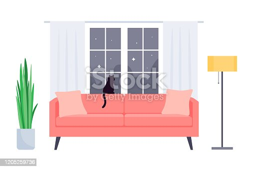 istock Interior of the living room in the house. Sofa, plant, window, floor lamp and cat. 1205259736