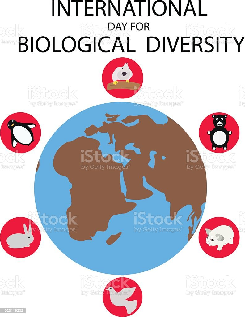 international day for biological diversity stock vector art rh istockphoto com Diversity Symbols Clip Art The Diversity in Workplace