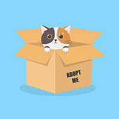 istock International Homeless Animals Day. Cute cartoon cat in a cardboard box with the words Adopt me. Vector illustration isolated on blue background. 1332033516