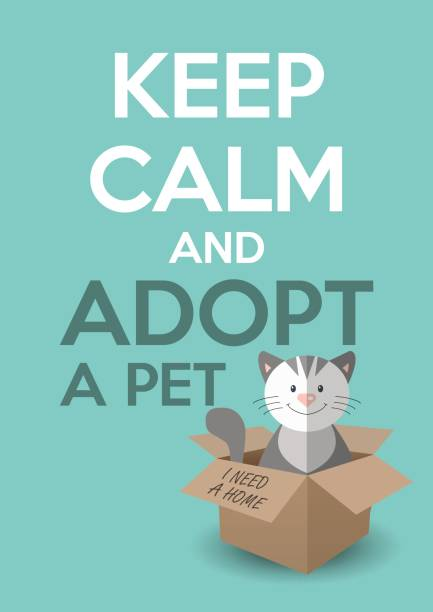 Best Animal Shelter Illustrations, Royalty-Free Vector ...
