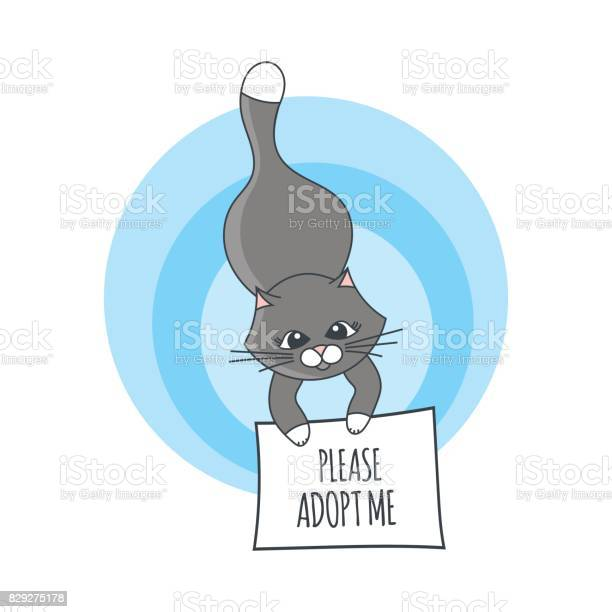 International homeless animals day illustration vector vector id829275178?b=1&k=6&m=829275178&s=612x612&h=7lkib xdxjkvnofghmzm8f3kv0ld lbescyrn6nvhec=
