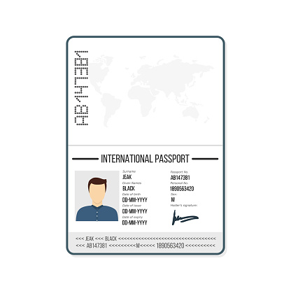 International Male Passport Template With Photo Vector Illustration